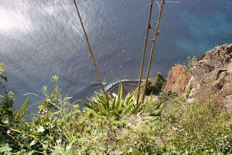 ai1080.photobucket.com_albums_j334_jnunes1977_Madeira_Madeira052800x600.