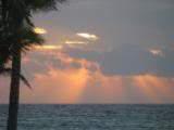 ai426.photobucket.com_albums_pp345_MarisaDavid_61b616a8.