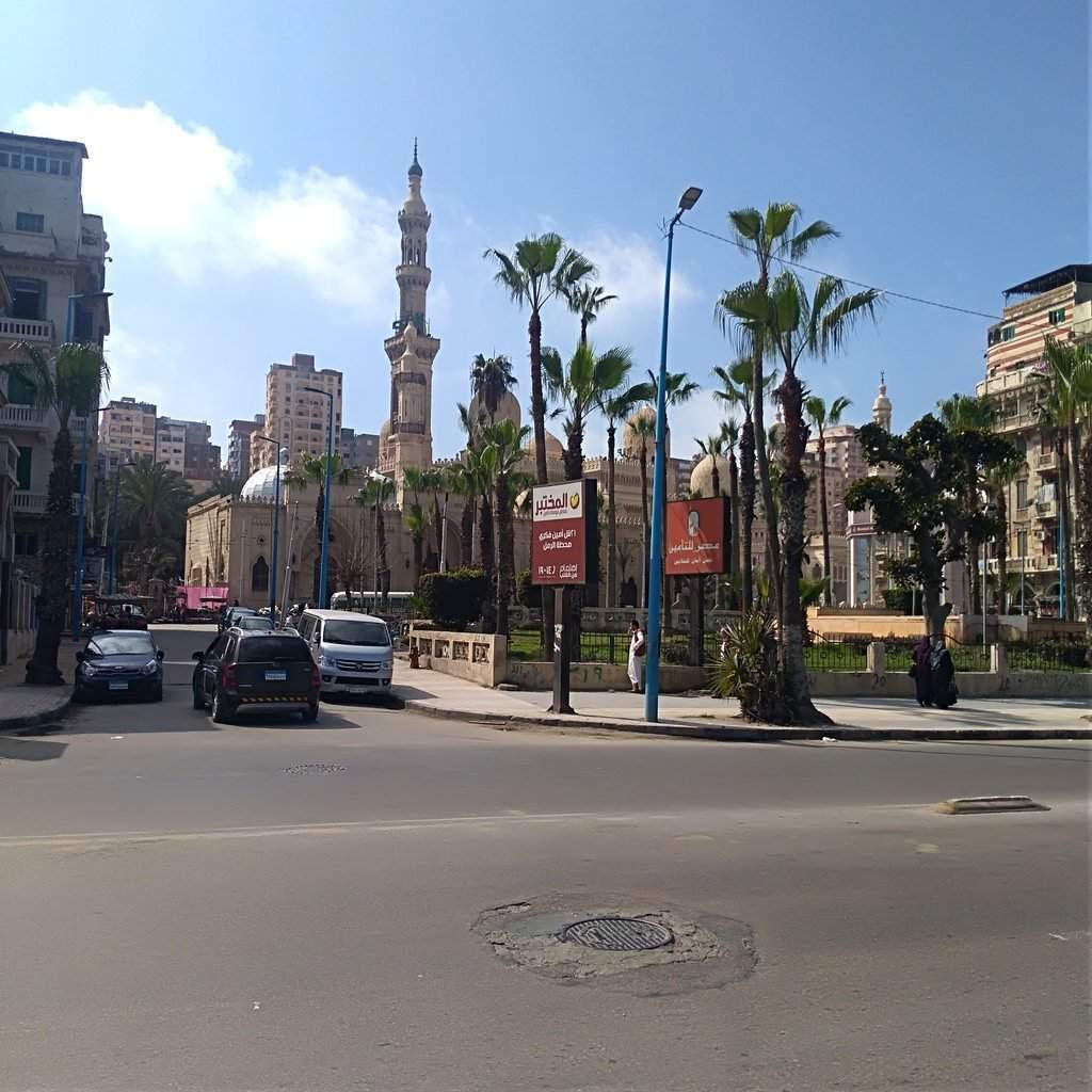 Alexandria 2 (1).