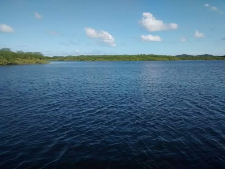 mangue no rio do inferno boipeba_20150331_134621392.