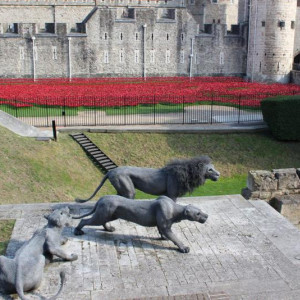 2 Tower Of London
