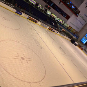 Dubai Mall Ice Ring