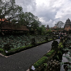 Ubud Water Palace.JPG